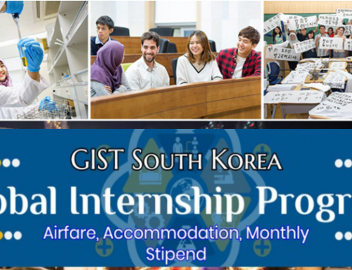 Global Intern Program in Korea